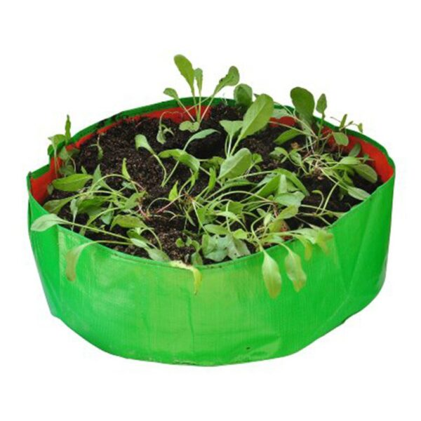 HDPE Spinach Bags